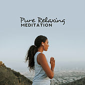 Pure Relaxing Meditation – Relax Zone, Ambient Yoga, Soothing Meditation to Calm Down, Inner Harmony, Meditation Music Zone, Yoga Collection de Relaxing Flute Music Zone