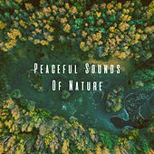 Peaceful Sounds Of Nature by Various Artists