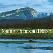 Nature Sounds And Noise by Various Artists