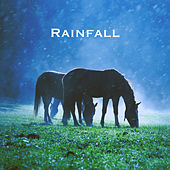 Rainfall by Various Artists