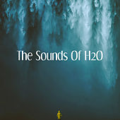The Sounds Of H2O by Various Artists
