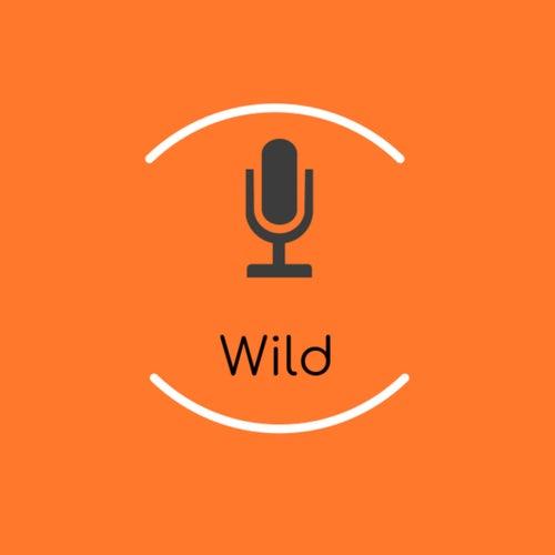 Wild (Instrumental) by Catherine McGrath