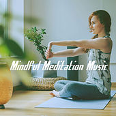 Mindful Meditation Music by Various Artists