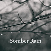 Somber Rain by Various Artists