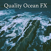 Quality Ocean FX de Various Artists