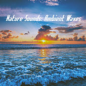 Nature Sounds: Ambient Waves de Various Artists