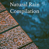 Natural Rain Compilation by Various Artists