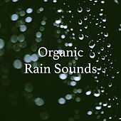 Organic Rain Sounds by Various Artists