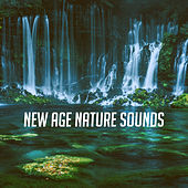 New Age Nature Sounds by Various Artists