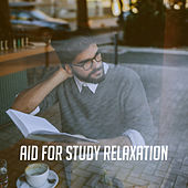 Aid for Study Relaxation de Various Artists