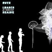Overloaded brains by Dj tomsten