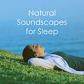 Natural Soundscapes for Sleep by Various Artists