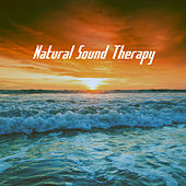 Natural Sound Therapy by Various Artists