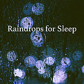 Raindrops for Sleep de Various Artists