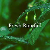 Fresh Rainfall by Various Artists