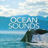 Ocean Sounds - EP de Ocean Sounds (1)