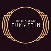 Tumastin de Mdou Moctar