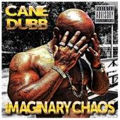Imaginary Chaos de Cane Dubb