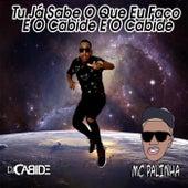 Tu Já Sabe o Que Eu Faço e o Cabide e o Cabide (feat. MC Palinha) de DJ Cabide