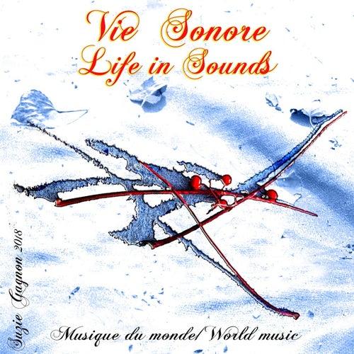 Musique du monde: Vie sonore by Suzie Gagnon