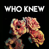 Who Knew by Sassydee