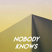 Nobody Knows by Sassydee