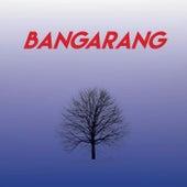 Bangarang by CDM Project
