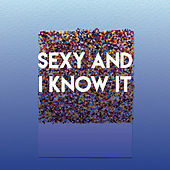 Sexy and I Know It by CDM Project