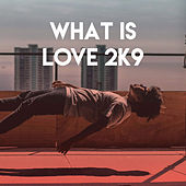 What Is Love 2K9 by CDM Project