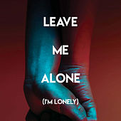 Leave Me Alone (I'm Lonely) by Sassydee