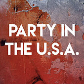 Party in the U.S.A. by Sassydee