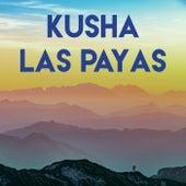 Kusha Las Payas de Grupo Super Bailongo