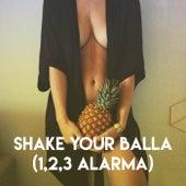 Shake Your Balla (1,2,3 Alarma) de Grupo Super Bailongo