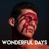 Wonderful Days by CDM Project