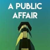 A Public Affair by Sassydee