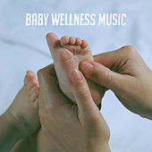 Baby Wellness Music by Various Artists