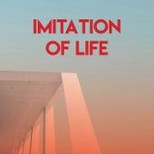 Imitation of Life de Graham BLVD