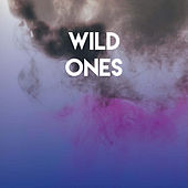 Wild Ones de Miami Beatz