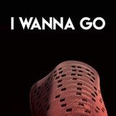 I Wanna Go by Sassydee