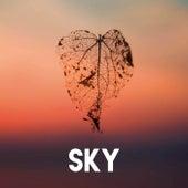Sky by CDM Project