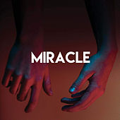 Miracle by CDM Project