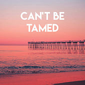 Can't Be Tamed by Sassydee