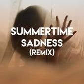 Summertime Sadness (Remix) by CDM Project