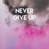 Never Give Up by Sassydee