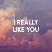 I Really Like You by Sassydee