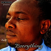 Everything by IQ