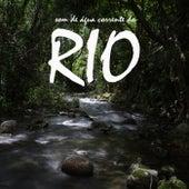 Som de Água Corrente do Rio de Sons da Natureza Projeto ECO Brasil