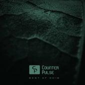Counter Pulse: Best of 2018 - EP de Various Artists