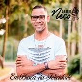 Em Busca da Felicidade von Neco Araújo