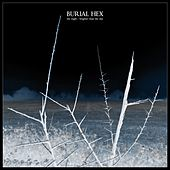 The Night by Burial Hex